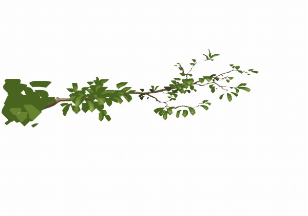 CG背景 枝 木の描き方
