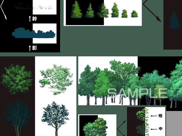 樹木 木 観葉植物