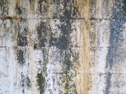 外壁_汚れ壁